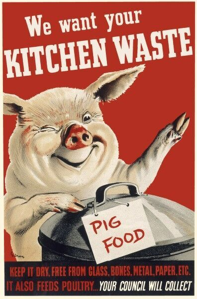 We Want Your Kitchen Waste - poster encouraging the saving of food scraps for use as pig food, to be collected by the council. It also feeds poultry
