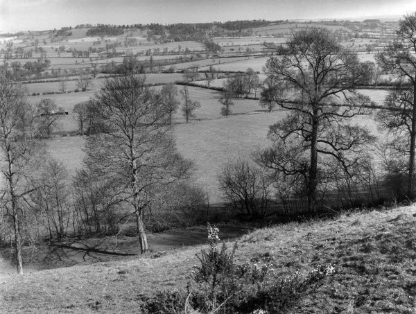 An early spring landscape view of the countryside of Warwickshire, England, from Camp Lane, near Edge Hill. Date: early 1960s