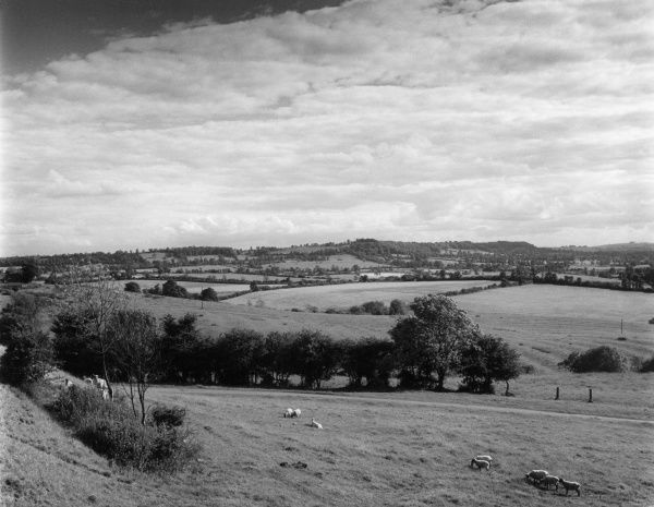 A fine panoramic view of the Edge Hills, seen from the Burton Hills, Warwickshire, England. Date: 1960s