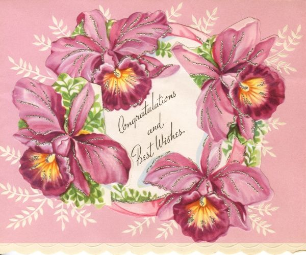 A wedding day card: Congratulations and Best Wishes, decorated with purple irises. Date: 1950s