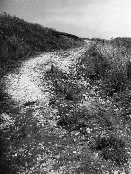 The trackway over Cefn Bryn, from Oxwich to Reynoldston, Gower Peninsula, Glamorganshire, Wales. Date: 1960s