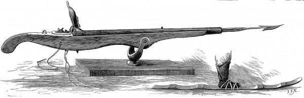 Engraving of a typical harpoon gun, used for shooting whales or walrus in the Arctic region, and a patent snow-shoe or ski, 1875. In this period there were many British expeditions to the Arctic, including the expedition led by George Nares of 1875-1876