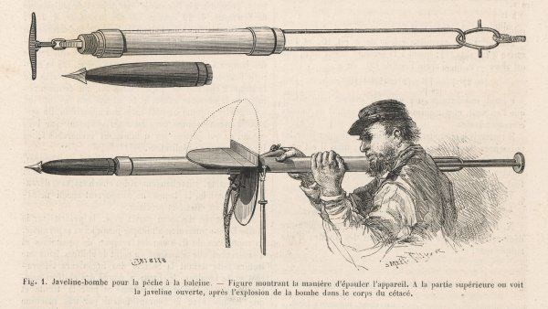 A javelin bomb used for whaling