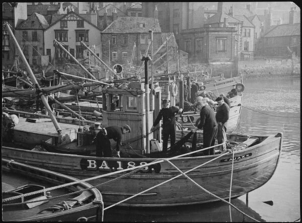 A fishing fleet of Scottish Drifters in Whitby harbour, Yorkshire, England