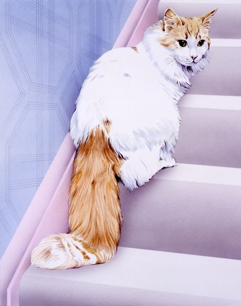 A pet cat sitting on the stairs. Watercolour painting by Malcolm Greensmith