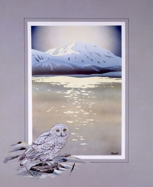 A view toward a snow-capped peak across a cold wintery lake. A snowy Owl has been added to th border framing the scene. Painting by Malcolm Greensmith