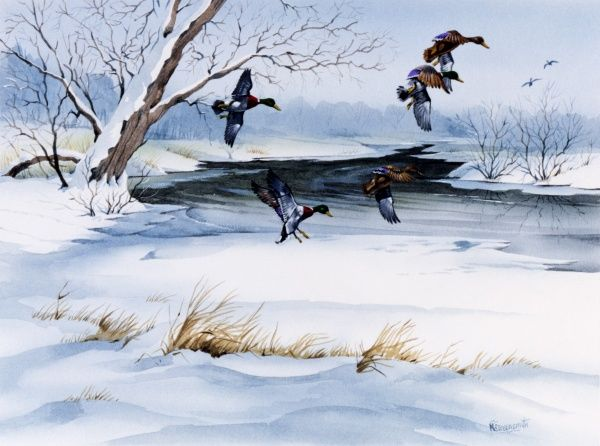 A winter landscape in the countryside, with snow on the ground and ducks flying across the sky