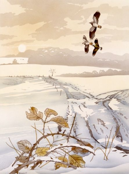 A winter scene in the countryside, with three birds flying over a snow-covered landscape
