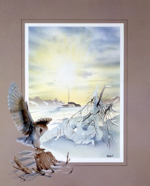 The weak yellow light of the winter sun rising over a desolate snowy scene surrounding a solitary farmhouse. A landing barn owl has been added to the border framing the scene. Painting by Malcolm Greensmith