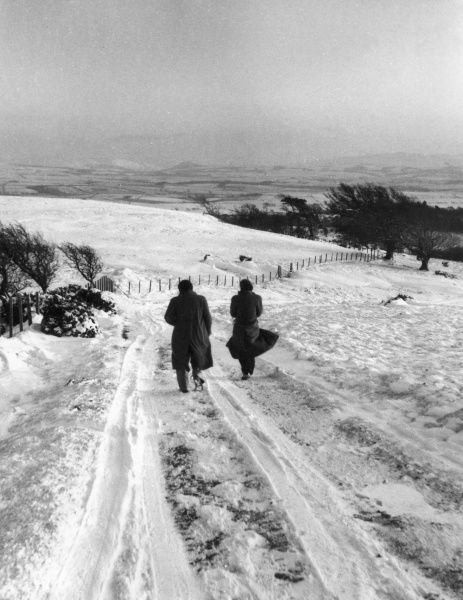 Walkers braving the winter snow on the hills near Ayr, Ayrshire, Scotland. Date: 1950s