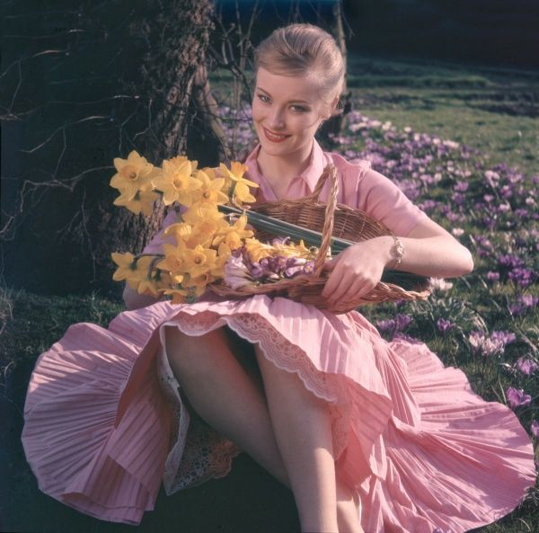 Pretty blonde woman in a pink shirtwaister dress with full, finely pleated skirt, holds a basket full of daffodils as she sits on the grass surrounded by crocii