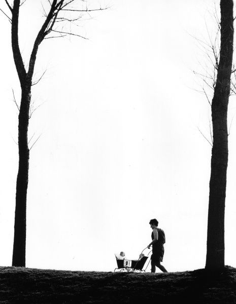 A woman wheeling two babies in a pram, between two trees in silhouette