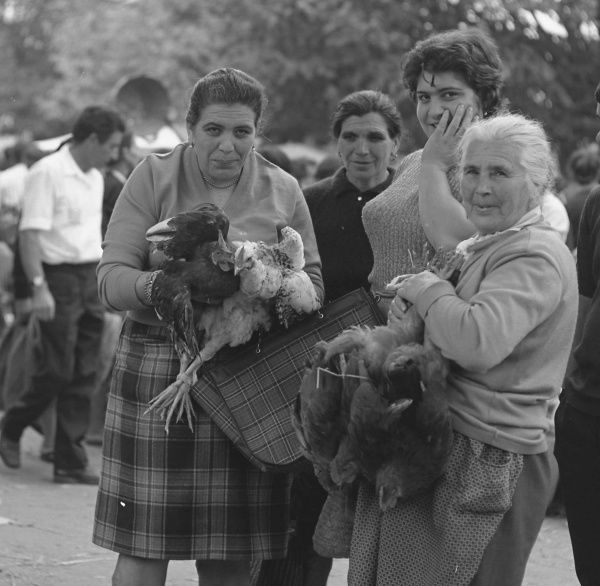 Four women, young and middle aged, holding poultry at an open air market