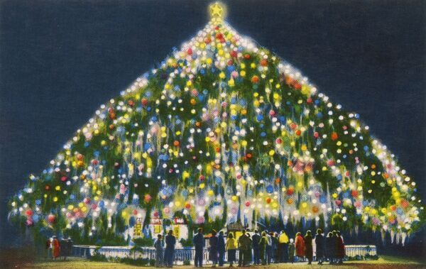 World's Largest Living Christmas Tree - Hilton Park, Wilmington, North Carolina, USA. A three hundred year old Live Oak tree lighted with 4000 bulbs - a popular toursit attraction in Wilmington. Date: circa 1930