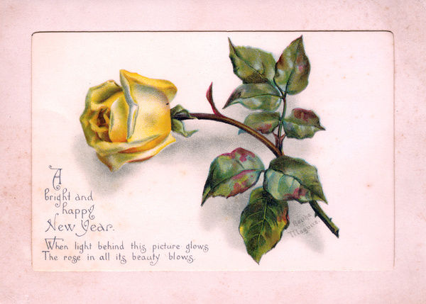 yellow rose on a new year card