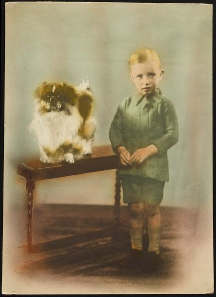 A young boy (Barrie Godfrey) stands rather pensively by a low table, upon which a pet Pekingese sits