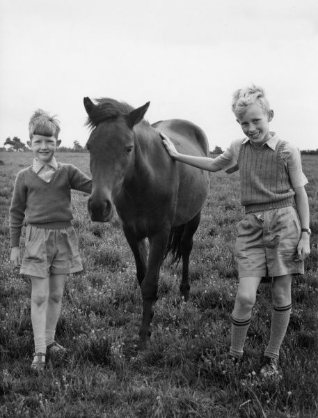 Two young boys pose for a photograph with a Moorland Pony, Devon