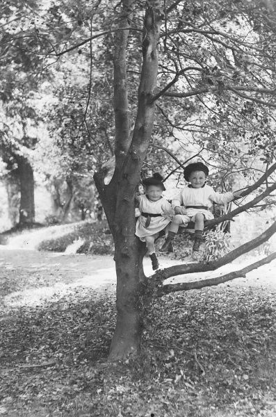 Two young children sit perched in a tree wearing loose tunics and beret-style hats. The leaves on the ground suggest this pictures was taken in the autumn