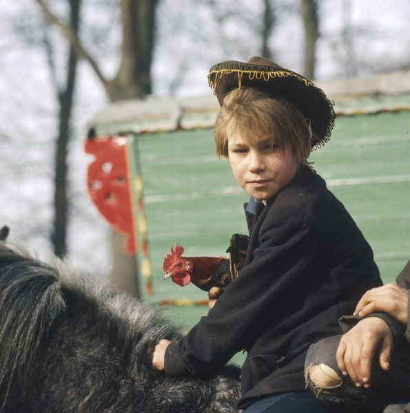 A young gypsy lad sits on his family pony, clutching a chicken at this encampment in Surrey