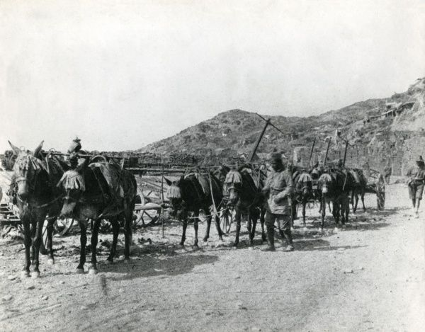 Troops of the Zion Mule Corps (part of the Jewish Legion section of the British Army, Royal Fusiliers) travelling along a dusty road in Palestine during the First World War. Date: 1914-1918