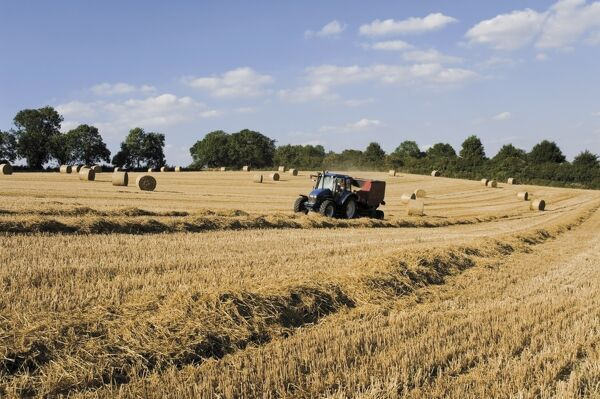 Tractor harvesting near Chipping Campden, along the Cotswolds Way footpath