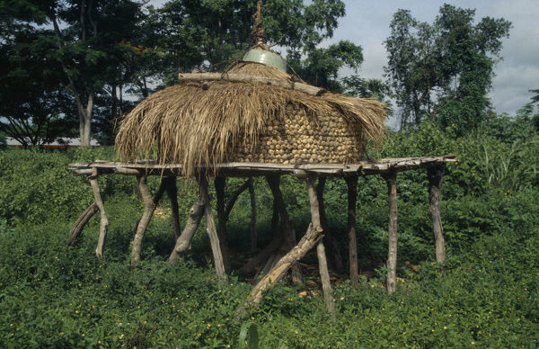 20048991. GHANA Eastern Region Maize store on raised platform with straw lid