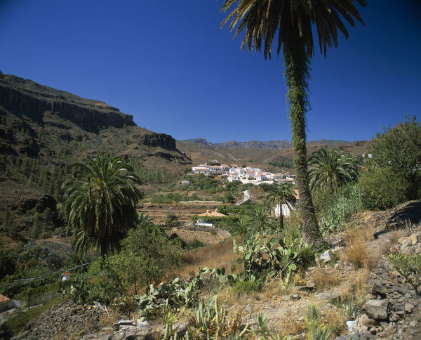 20064152. SPAIN Canary Islands Gran Canaria Fataga