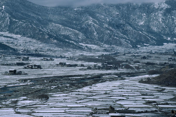 20066681. BHUTAN Paro Valley Paro Agricultural landscape in winter snow