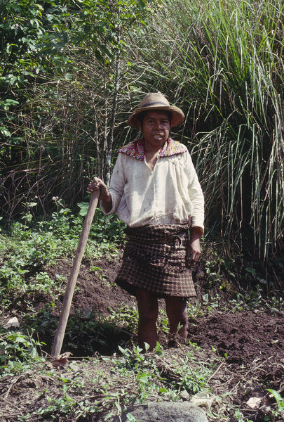 20068986. GUATEMALA Solola Campesino preparing land for cultivation