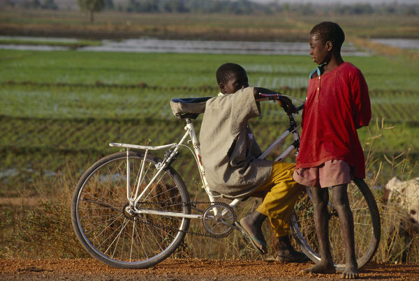 20072132. BURKINA FASO Bobo Dioulassou Two boys with a bicycle and a paddy field behind