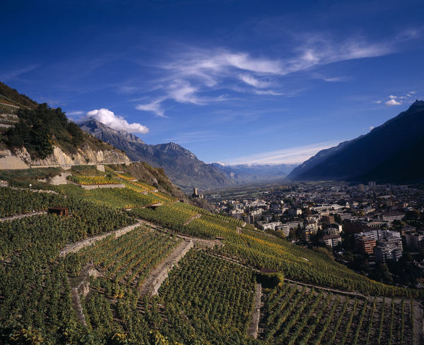 20084882. SWITZERLAND Valais Martigny Elevated view east along Rhone Valley above Vinyards