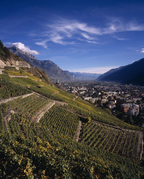 20084883. SWITZERLAND Valais Martigny Elevated view east along Rhone Valley above Vinyards