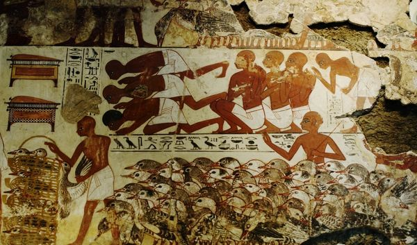 Mural From Tomb Chapel Of Nebamun At Thebes Egypt. Nebamun Was An Ancient  Egyptian Part 63