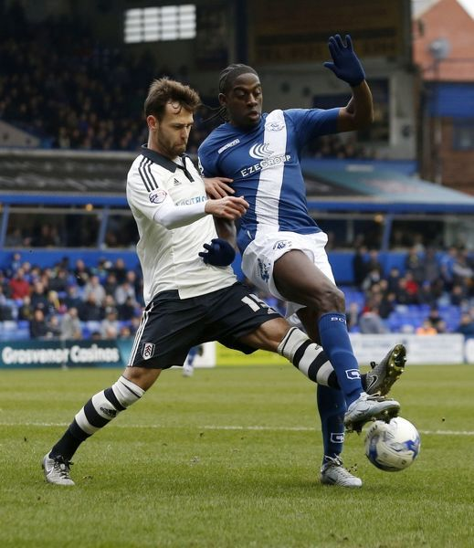 Birmingham City's Clayton Donaldson and Fulham's Michael Madl