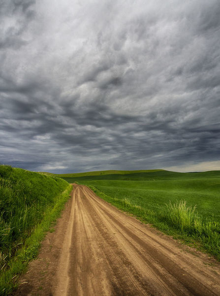 North America;USA;Washington;Palouse Country;Stormy Day Traveling through Country Backroad