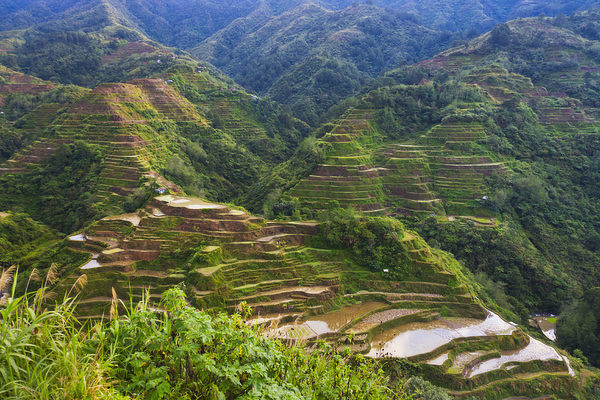 The Rice Terraces of the Philippine Cordilleras, UNESCO World Heritage site, Banaue, Ifugao Province, Philippines