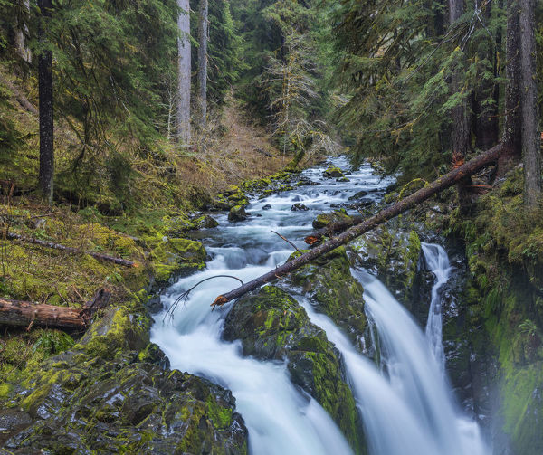 Sol Duc Falls in Olympic National Park, Washinton, USA