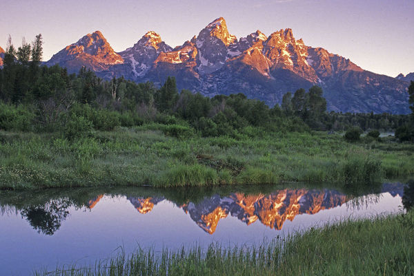 USA, Wyoming, Grand Teton National Park. Mountains reflect in beaver pond at sunrise. Credit as: Dennis Flaherty / Jaynes Gallery / DanitaDelimont