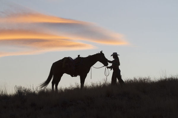 USA, Wyoming, Shell, The Hideout Ranch, Silhouette of Cowgirl with Horse at Sunset (MR/PR)