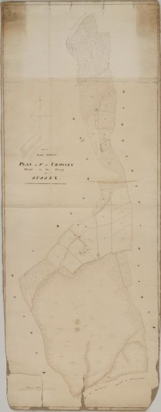 Crawley tithe map 1839 South section By H Walter Windsor
