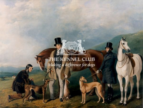 Signed and dated 1853 Oil on canvas 28 x 36 ins This painting shows the end of a successful course at the Beacon Hill meeting in October 1848. The mounted judge can be seen in the distance on a grey horse and in the foreground with the two dogs