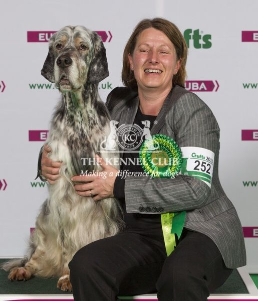 Picture shows Tereza Watkins from Chruchdown with Josh a English Setter], which was the Best of Breed winner today (Thursday 05.03.15), the first day of Crufts 2015, at the NEC Birmingham