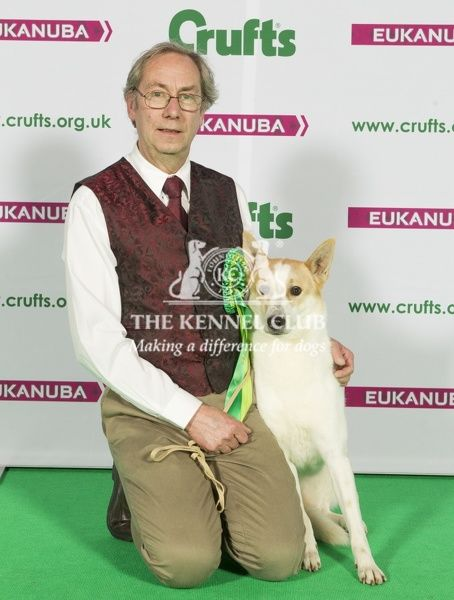 Picture shows Richard Minto from Skegness with Phoebe a Canaan Dog, which was the Best of Breed winner today (Sunday 08.03.15), the fourth day of Crufts 2015, at the NEC Birmingham