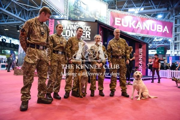 9-9:30am: RAF dogs on Eukanuba stand