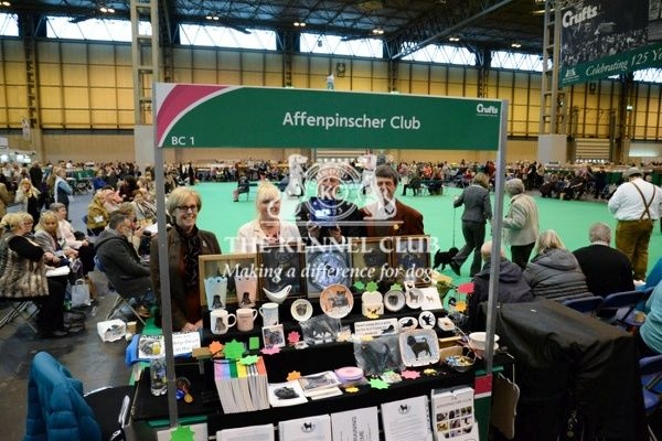 2:30pm:   Best Breed Club Stand - Toy Group   Winners: Jenny and Gordon Todhunter