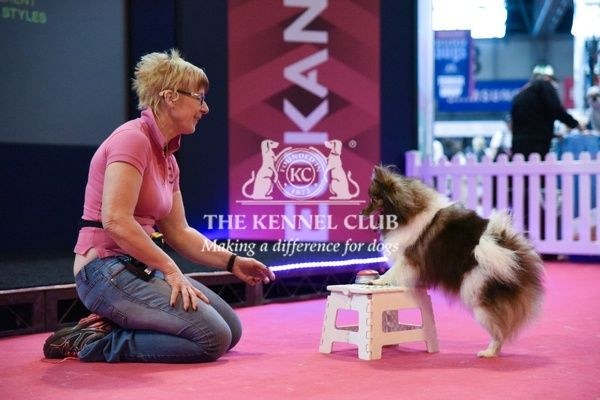 4pm: Nikki and Pomeranian on Eukanuba stand