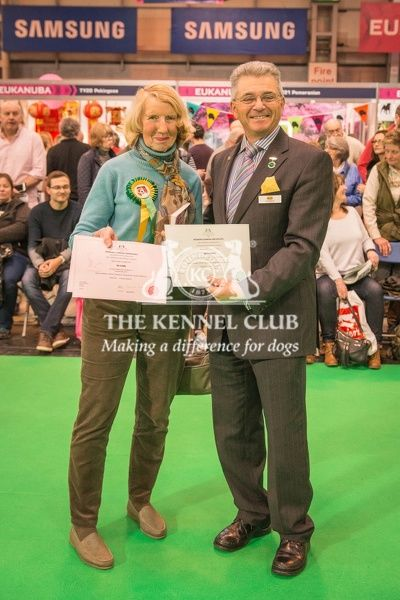 Paul Rawlings, Chairman of the Working Gundog Certificate Working Party awards a certificate to Mrs G Bailey for her dog Tesni Tara at Gunstock