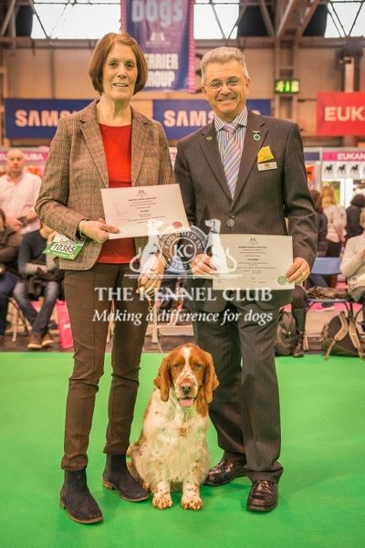 Paul Rawlings, Chairman of the Working Gundog Certificate Working Party awards a certificate to Mrs G Cooper for her dog Fiergen City Limits