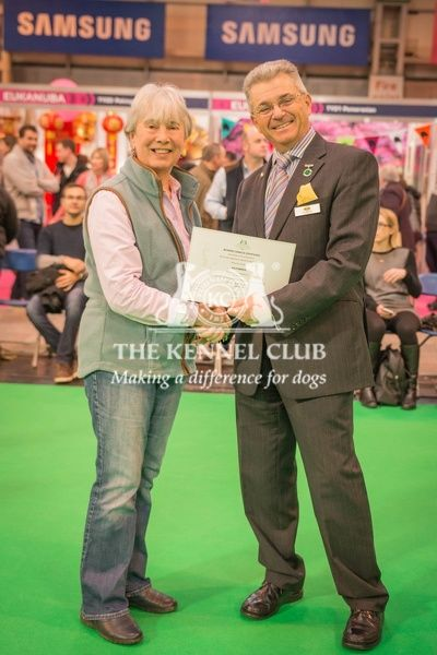Paul Rawlings, Chairman of the Working Gundog Certificate Working Party awards a certificate to Mrs Annette Judge for her dog Beauteous Bess