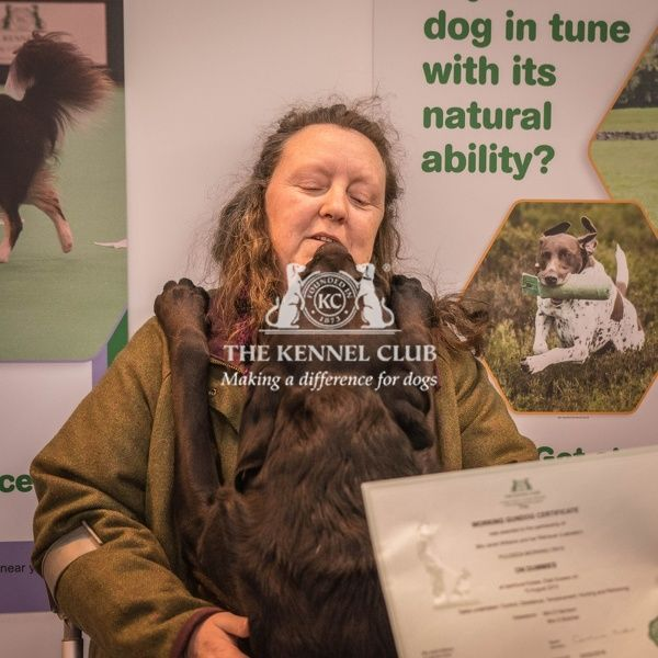 "working gundog certificate presentation   Mrs Janet Williams with her Working Gundog Certificate and her dog ""Pulideda Morning Onyx&quot"